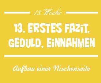 13.-Woche-Aufbau-Nischenwebsite