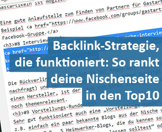 Backlink Strategie Nischenseiten