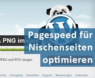 Pagespeed für Nischenseiten optimieren